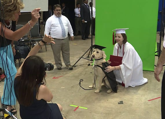 Pup graduates high school with very own cap and gown