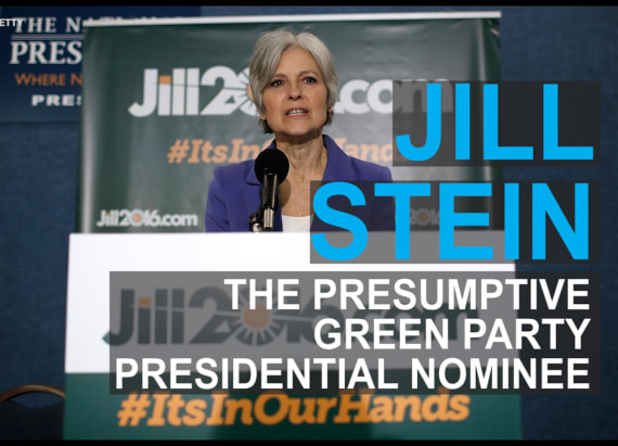15 things you need to know about Jill Stein