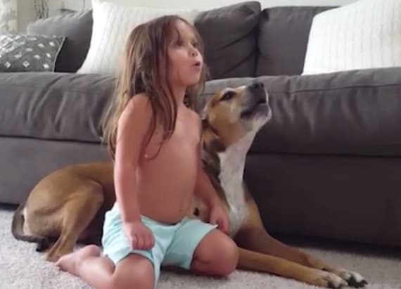 Dog tries his hardest to sing with toddler
