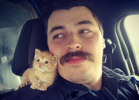 Cop finds adorable new partner in unlikely place