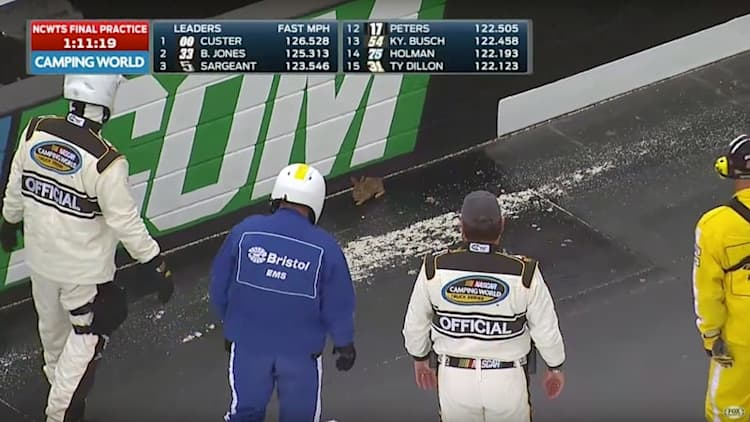 Lone rabbit defeats entire field of NASCAR trucks
