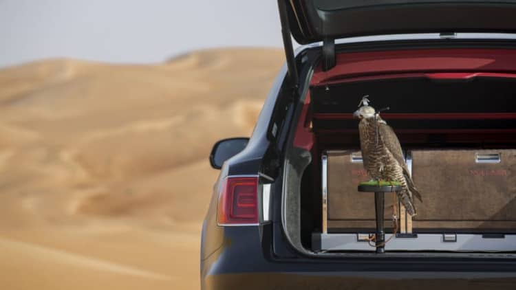 Finally, a Bentley Bentayga just for falconers