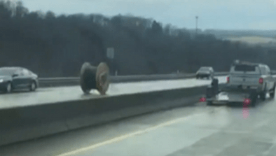 Giant Spool of Wire Rolls Down Freeway