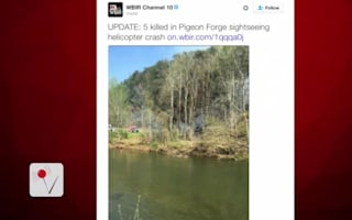 Sight-seeing helicopter crash in USA: Five dead