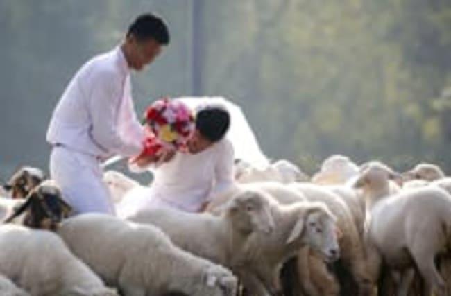 Hochzeitsfotografen verraten: Fotos, die sie nie zeigen dürfen