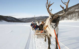 Christmas in Lapland: Where to go and what to do