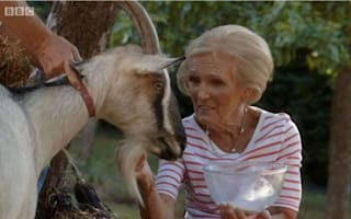 Nanny knows best! Fans chuckle at Mary Berry's bid to milk a goat
