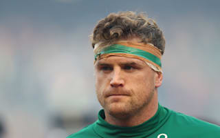 Leinster monitoring Ireland duo Heaslip and Fitzgerald