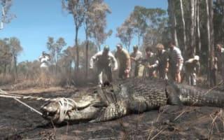 Bindi Irwin Instagrams video of her wrestling 15ft crocodile