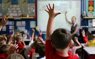 Primary pupils to get job visits