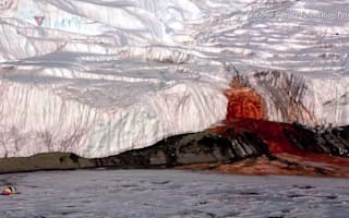 'Bloody' Antarctic mystery finally solved