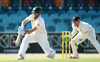 Marsh deserves another chance - Lehmann