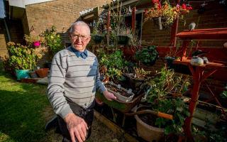 Britain in Bloom award winner heartbroken after vandals strike