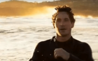 Bodyboarder hit by dolphin breaks two ribs in Australia