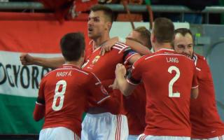 Hungary striker Priskin dedicates crucial goal to Fulop