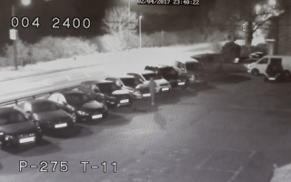 CCTV footage captures yobs vandalising 60 vehicles at dealership