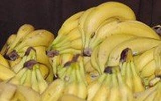 MEPs banana split over EU subsidies