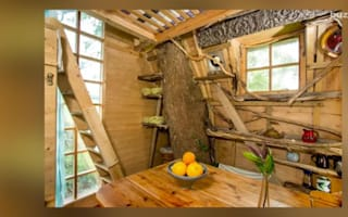 Brits would rather stay in this treehouse than a luxury hotel