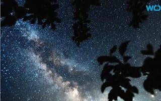 Milky Way no longer visible to third of people due to light pollution