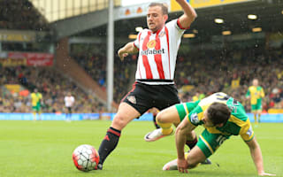 Cattermole crucial to Sunderland relegation fight - Allardyce