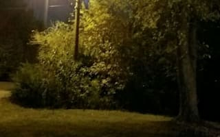 Photographer captures ghostly figure in full moonlight