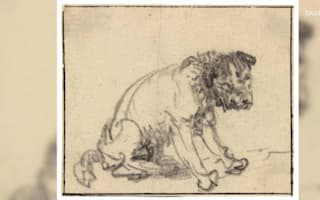 Museum shocked to discover dog drawing is priceless Rembrandt