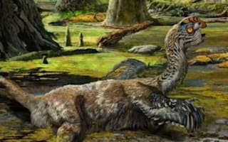 Dinosaur fossil shows struggle before death