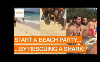 Party-goers rescue distressed shark at Hawaii beach