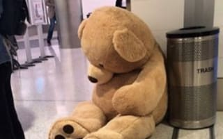 Why was this giant bear left alone at the airport?