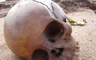 Mystery over 1000-year-old skull and jawbone found on Australian beach