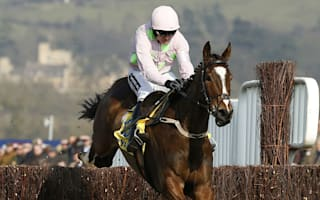 Triple Cheltenham winner Vautour put down