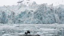 Este emotivo vídeo de Greenpeace en el Ártico es la nueva sensación de internet