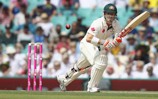 Warner hails Australia for responding to 'kick up the backside'