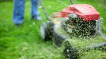 El césped de tu jardín será el combustible de tu vehículo en el futuro