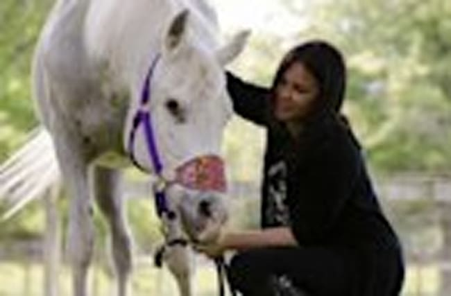 Stewart Adopts Abandoned, Paint-Covered Horse
