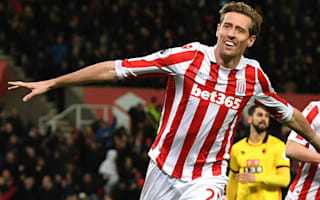 Hughes confident over new Stoke deal for Crouch