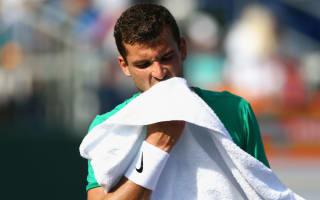 Dimitrov suffers meltdown as Schwartzman wins in Istanbul