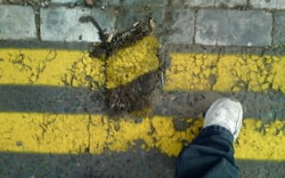 Dead hedgehog fails to stop 'mad' yellow line painting