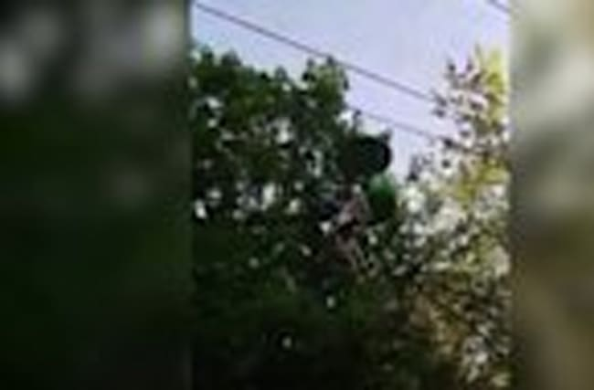 Teenager falls 25 feet from theme park ride