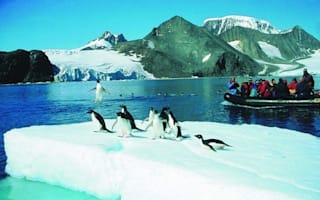 New Antarctic law bans 'heavy' cruise ships from its waters