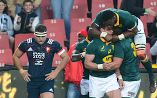 Rampant Springboks whitewash France