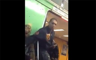 Caught in the act! Train thief captured on video by fellow passenger