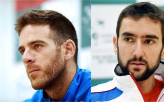 Del Potro pegs Croatia as Davis Cup favourites