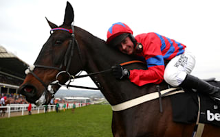Jump racing great Sprinter Sacre retired