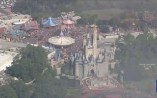 Toddler dragged into lagoon by alligator at Disney World