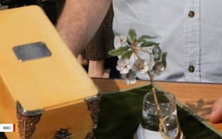 Fabergé flower stuns Antiques Roadshow experts