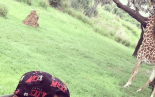 Katy Perry shares Instagram picture of trip to Florida zoo