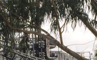 Thorpe Park ride jams leaving passengers trapped upside down