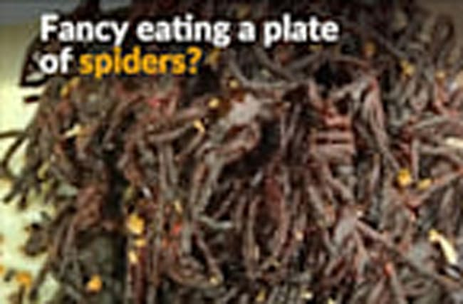 In Cambodia, people relish taking a bite out of spiders