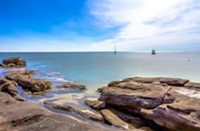 World's largest dinosaur footprint discovered in Australia